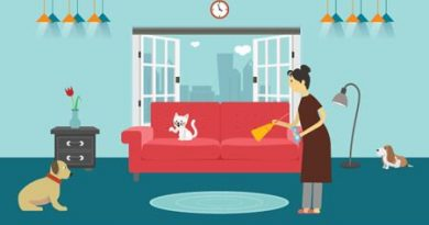Cleaning Your Dubai Home When You Have Pets